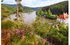 Bleibacher See, Taumlandschaft