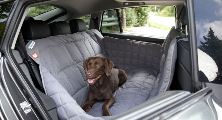 Für eine komfortable Reise von Zwei - und Vierbeinern bietet Doctor Bark spezielle Rückbank- und Kofferraumdecken an.