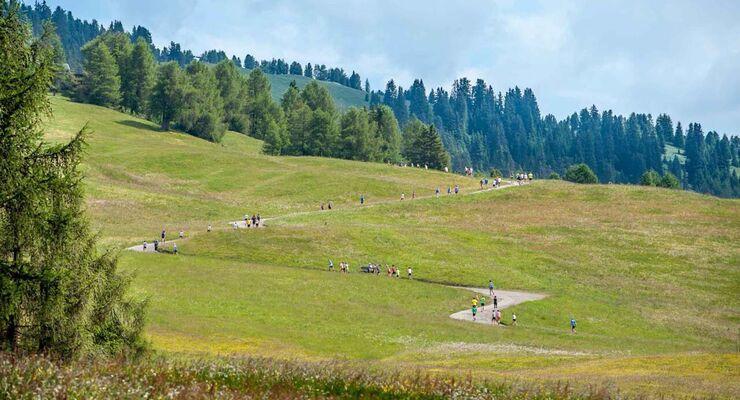 Grüner Halbmarathon Saiser Alm