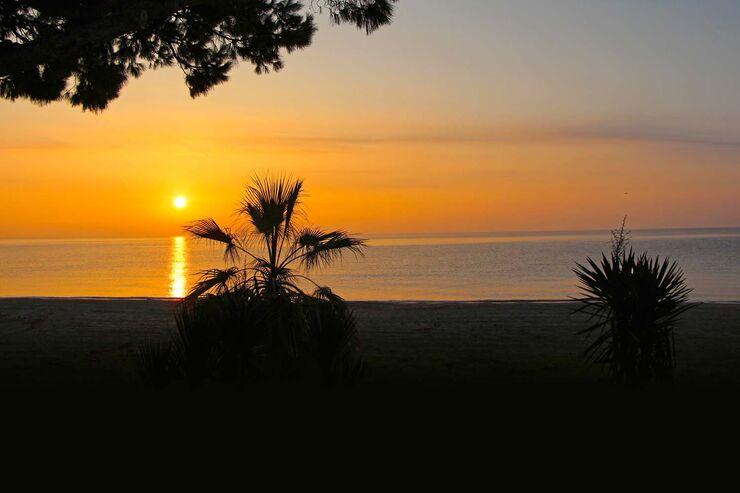 Ihren Namen verdankt die Goldene Küste der Farbe der langen Strände.
