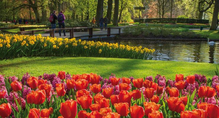Keukenhof Blumenpark