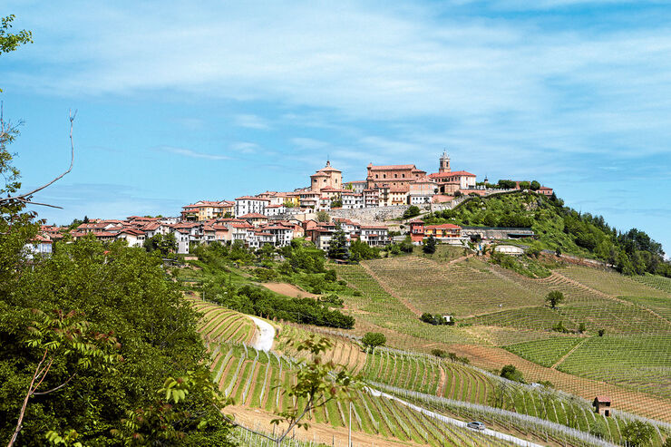 La Morra ist eine der bedeutendsten Weinbaugemeinden des Piemont.